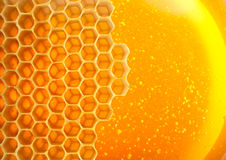 Free Honey In Comb Royalty Free Stock Photo - 39389745