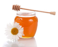 Honey  isolated on white background Royalty Free Stock Images