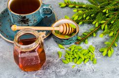Free Honey, Jam From Green Spruce Shoots Stock Image - 117028781