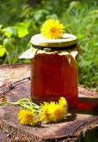 Honey Jar Photographie stock