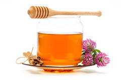 Honey in jar with dipper, cinnamon, flower on isolated background. Honey in glass jar with wooden dipper, cinnamon sticks and clover flower on white isolated Stock Photography