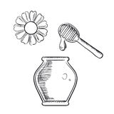 Honey jar with dipper and flower Royalty Free Stock Photos