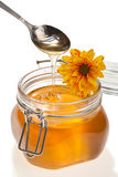 Honey jar, with flower on it, isolated Stock Image