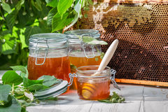 Honey in a jar and Honeycomb on the background of linden trees royalty free stock photo