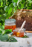 Honey in a jar and honeycomb Stock Photo