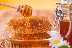 Honey in jar with honeycomb and wooden drizzler Royalty Free Stock Photography