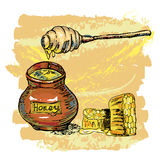 Honey jar with honeycombs Stock Images