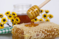 Honey in jar on a light background Stock Photos