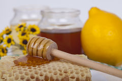 Honey in jar on a light background. Honey in  jar with honey dipper on a light background Royalty Free Stock Image
