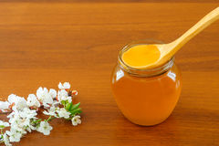 Honey in jar with wooden spoon Royalty Free Stock Images