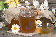 Honey in a jar Royalty Free Stock Image