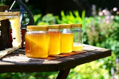 Honey Jars in der Sonne Stockfotografie