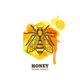 Honey label, emblem, tag design elements. Vector hand drawn outline honeybee on watercolor honeycombs. Royalty Free Stock Photos