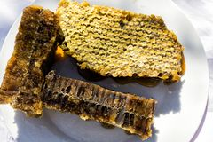 Honey in large quantities stock image