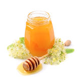 Honey with linden flowers Stock Image