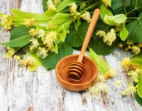 Honey and  linden flowers. Honey  and linden flowers on a board Royalty Free Stock Photography
