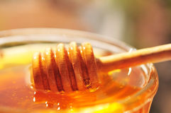 Honey macro with wooden honey dipper and glass jar. Royalty Free Stock Images