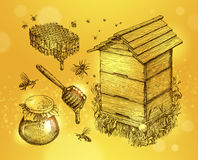 Free Honey, Mead, Beekeeping. Hand Drawn Apiculture Sketch Vector Illustration Stock Image - 79676161