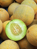 honey mellon Stock Photography