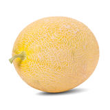 Honey melon in white background Stock Image