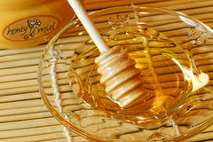 Honey Miel Stock Images