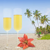 Honey moon. With champagne in the paradise Stock Photo