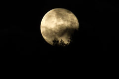 Honey Moon or full moon on Friday the 13th. 06/13/14, Oregon, Ca Royalty Free Stock Photo