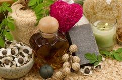 Honey and Moringa Soap. Bitter cucumber-chinese, Moringa plants useful. The medicinal properties Stock Photo