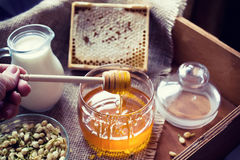 Honey in motion Royalty Free Stock Photos