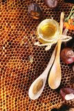 Honey and nuts Stock Image