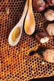 Honey and nuts Royalty Free Stock Photography