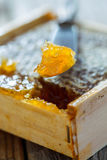 Honey pinch. Honey comb pinch closeup on an old table Royalty Free Stock Photo
