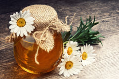Honey pot with daisies on wooden table Stock Image