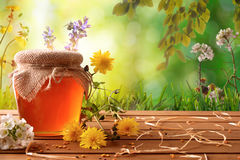 Honey pot with green nature background with flowers Royalty Free Stock Images