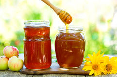 Honey pouring into glass jar Stock Photography