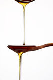 Honey pouring Stock Images