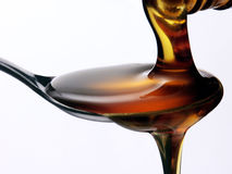 Honey pure. Stock Photography