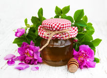 Honey and rose flowers Royalty Free Stock Image