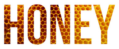 Honey. Sample text banner with copyspace royalty free stock photography