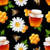 Honey seamless pattern Stock Photos