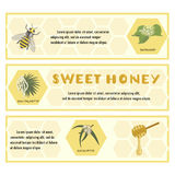 Honey set for banner, flyer, exhibitions, posters. Royalty Free Stock Photo