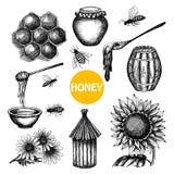 Honey set black hand drawn doodle Stock Photography