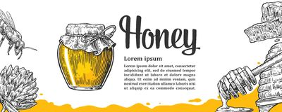 Honey set. Jars beer and honeycomb. Stock Photography