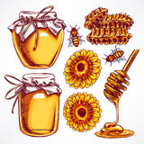 Honey set. Jars of honey, bees, honeycomb. hand-drawn illustration Royalty Free Stock Photos