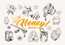 Honey Sketches Set, Bee Hive, Honey Jar, Barrel, Spoon Hand Drawn Vector Illustration. Honey Sketches Set, Bee Hive, Honey Jar, Barrel, Pot, Spoon And Flower stock illustration