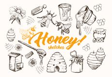 Honey Sketches Set, colmena de la abeja, Honey Jar, barril, ejemplo dibujado mano del vector de la cuchara Imagen de archivo