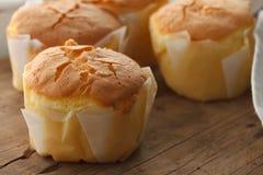 Honey soft cheese cake sweet pastries dessert yummy still life closeup Stock Photos