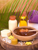 Honey and spa treatment Stock Photos