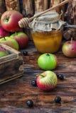 Honey Spas fotografia stock libera da diritti