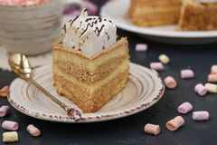 Honey sponge cake with butter cream located on a dark background stock photography